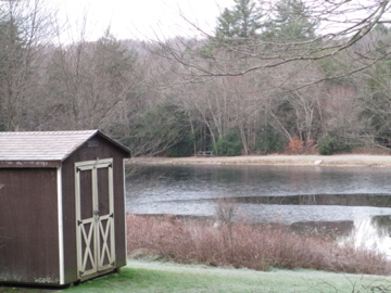 December Pond and Woods